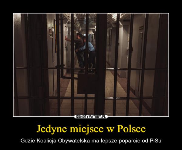 Jedyne miejsce w Polsce – Gdzie Koalicja Obywatelska ma lepsze poparcie od PiSu