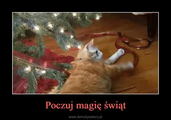 Poczuj magię świąt –