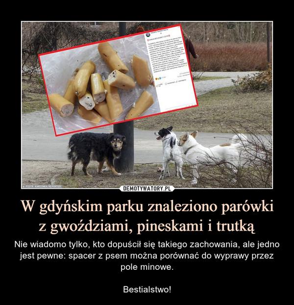 W gdyńskim parku znaleziono parówkiz gwoździami, pineskami i trutką – Nie wiadomo tylko, kto dopuścił się takiego zachowania, ale jedno jest pewne: spacer z psem można porównać do wyprawy przez pole minowe.Bestialstwo!