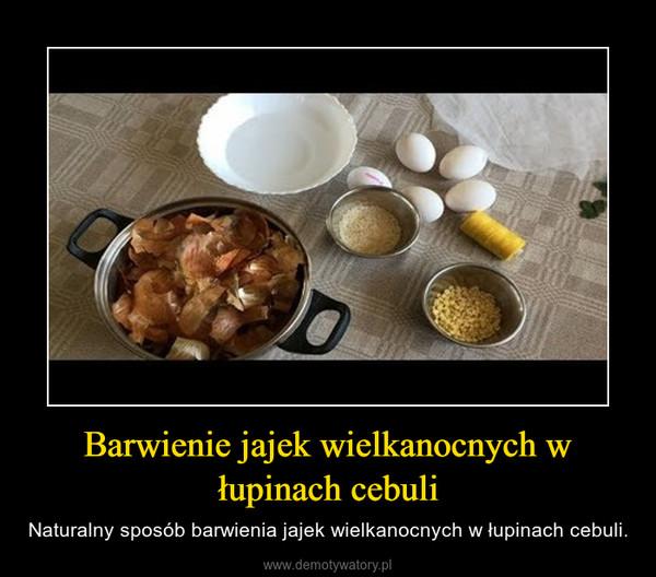 Barwienie jajek wielkanocnych w łupinach cebuli – Naturalny sposób barwienia jajek wielkanocnych w łupinach cebuli.