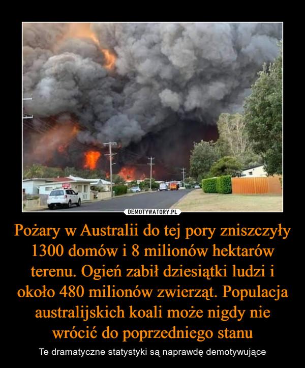 Pożary w Australii do tej pory zniszczyły 1300 domów i 8 milionów hektarów terenu. Ogień zabił dziesiątki ludzi i około 480 milionów zwierząt. Populacja australijskich koali może nigdy nie wrócić do poprzedniego stanu – Te dramatyczne statystyki są naprawdę demotywujące