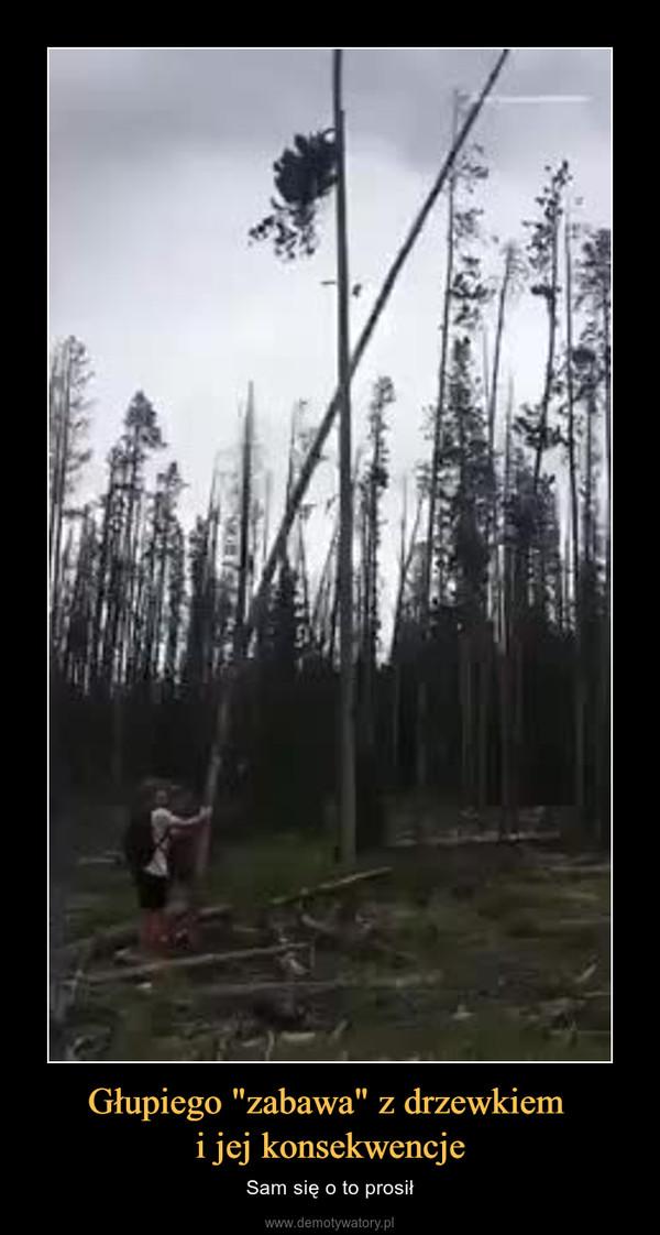 """Głupiego """"zabawa"""" z drzewkiem i jej konsekwencje – Sam się o to prosił"""