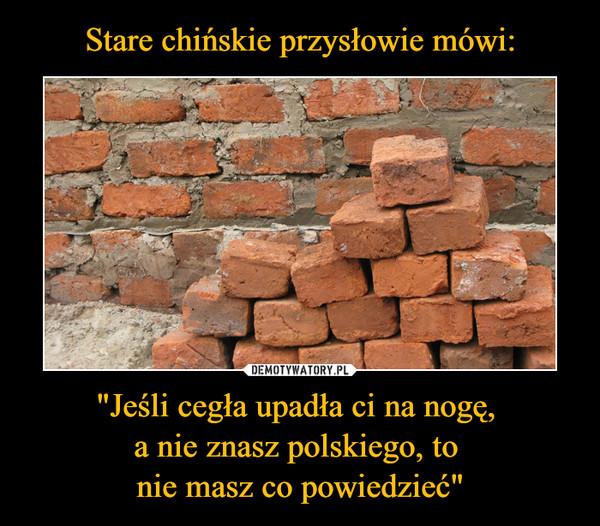 """""""Jeśli cegła upadła ci na nogę, a nie znasz polskiego, to nie masz co powiedzieć"""" –"""
