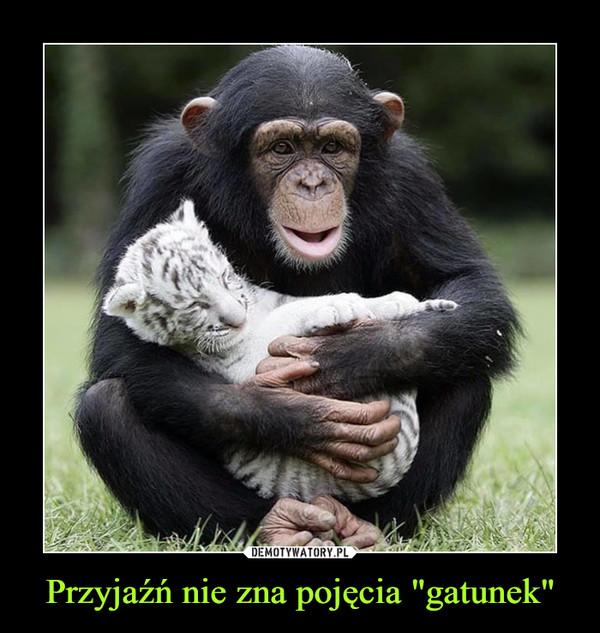 """Przyjaźń nie zna pojęcia """"gatunek"""" –"""