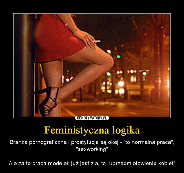 """Feministyczna logika – Branża pornograficzna i prostytucja są okej - """"to normalna praca"""", """"sexworking""""Ale za to praca modelek już jest zła, to """"uprzedmiotowienie kobiet"""""""
