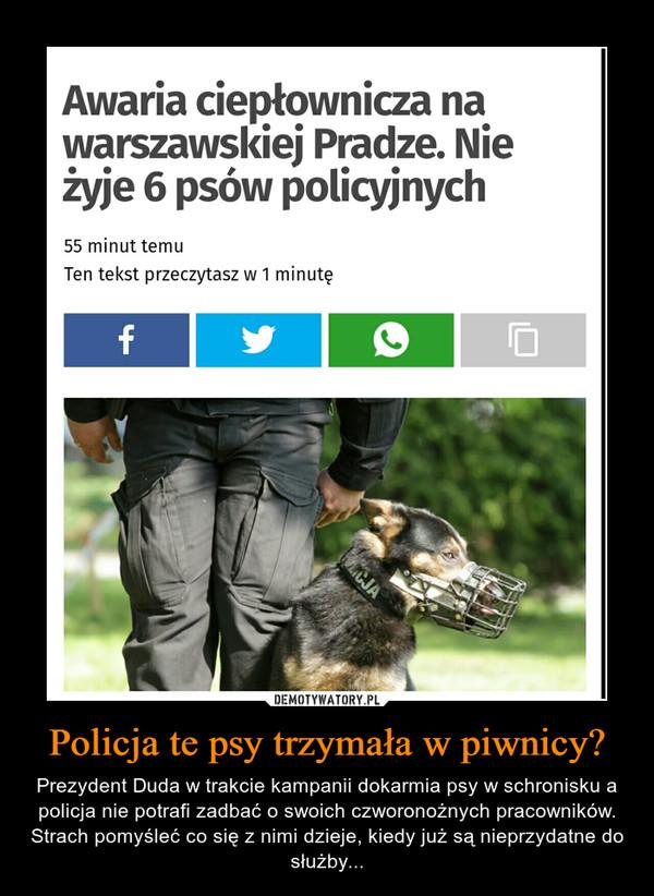 Policja te psy trzymała w piwnicy? – Prezydent Duda w trakcie kampanii dokarmia psy w schronisku a policja nie potrafi zadbać o swoich czworonożnych pracowników. Strach pomyśleć co się z nimi dzieje, kiedy już są nieprzydatne do służby...