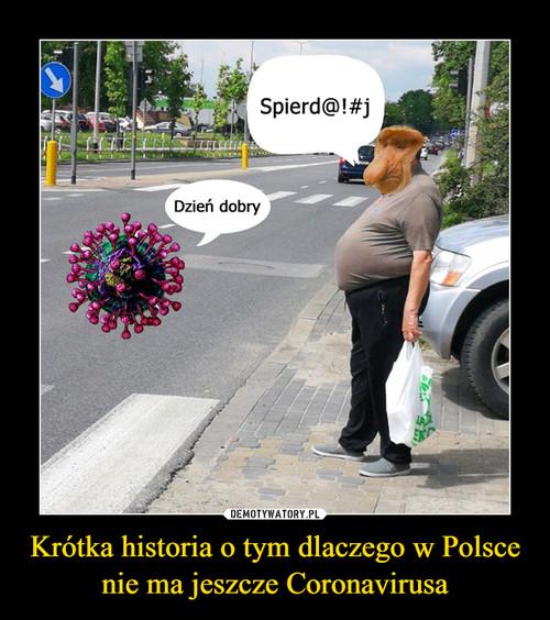 Krótka historia o tym dlaczego w Polsce nie ma jeszcze Coronavirusa