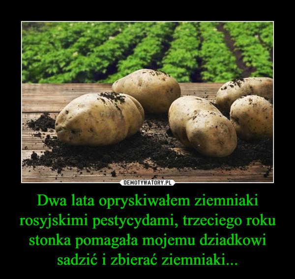 Dwa lata opryskiwałem ziemniaki rosyjskimi pestycydami, trzeciego roku stonka pomagała mojemu dziadkowi sadzić i zbierać ziemniaki... –