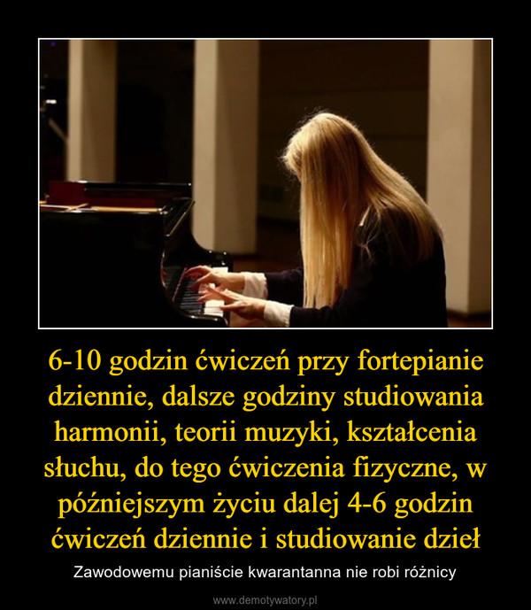 6-10 godzin ćwiczeń przy fortepianie dziennie, dalsze godziny studiowania harmonii, teorii muzyki, kształcenia słuchu, do tego ćwiczenia fizyczne, w późniejszym życiu dalej 4-6 godzin ćwiczeń dziennie i studiowanie dzieł – Zawodowemu pianiście kwarantanna nie robi różnicy
