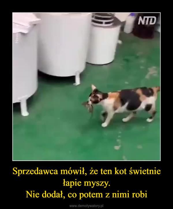 Sprzedawca mówił, że ten kot świetnie łapie myszy.Nie dodał, co potem z nimi robi –