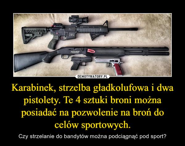 Karabinek, strzelba gładkolufowa i dwa pistolety. Te 4 sztuki broni można posiadać na pozwolenie na broń do celów sportowych. – Czy strzelanie do bandytów można podciągnąć pod sport?