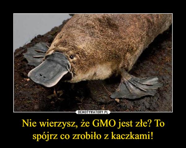 Nie wierzysz, że GMO jest złe? To spójrz co zrobiło z kaczkami! –