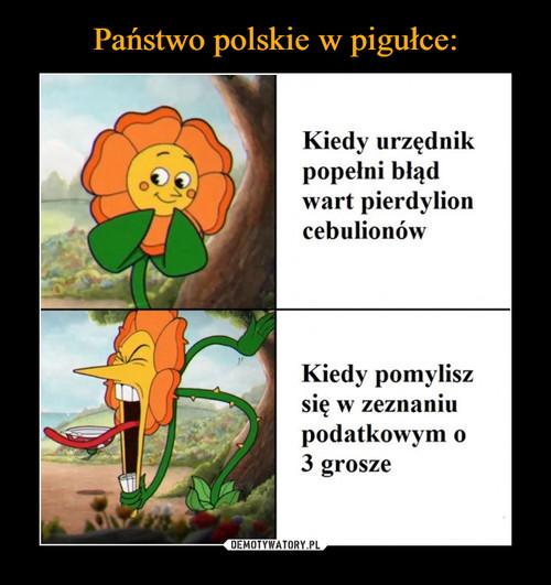 Państwo polskie w pigułce: