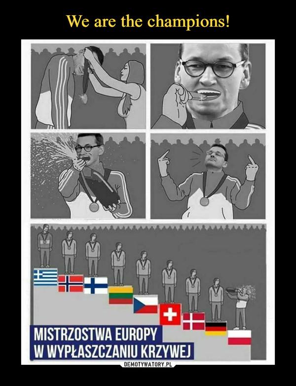 –  MISTRZOSTWA EUROPY IW WYPŁASZCZANIU KRZYWEJ