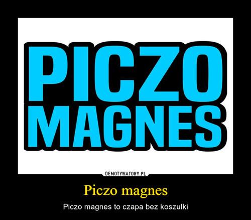 Piczo magnes