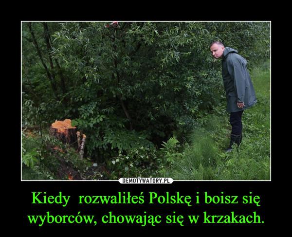 Kiedy  rozwaliłeś Polskę i boisz się wyborców, chowając się w krzakach. –
