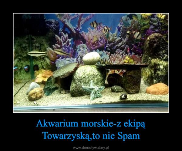 Akwarium morskie-z ekipą Towarzyską,to nie Spam –