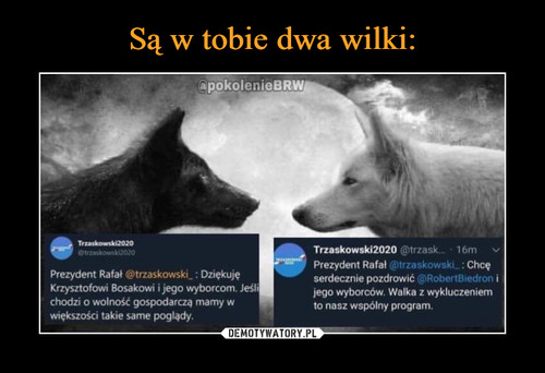 Są w tobie dwa wilki:
