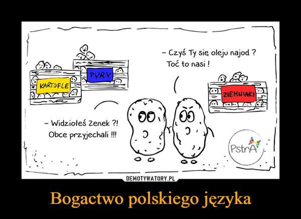 Bogactwo polskiego języka –  Widziołeś Zenek?!Obce przyjechali!!!Czyś Ty się oleju najod?Toć to nasi!