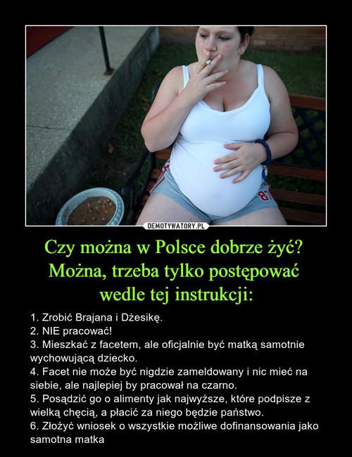 Czy można w Polsce dobrze żyć?  Można, trzeba tylko postępować  wedle tej instrukcji: