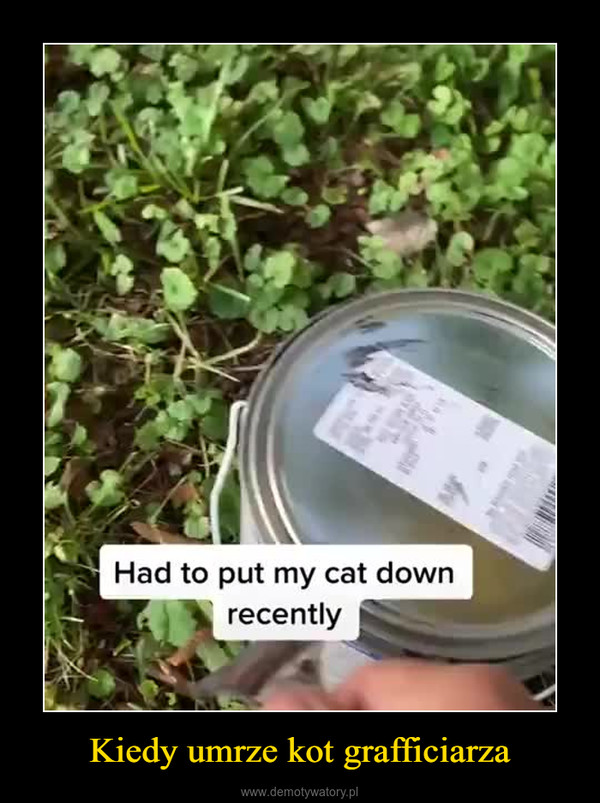 Kiedy umrze kot grafficiarza –