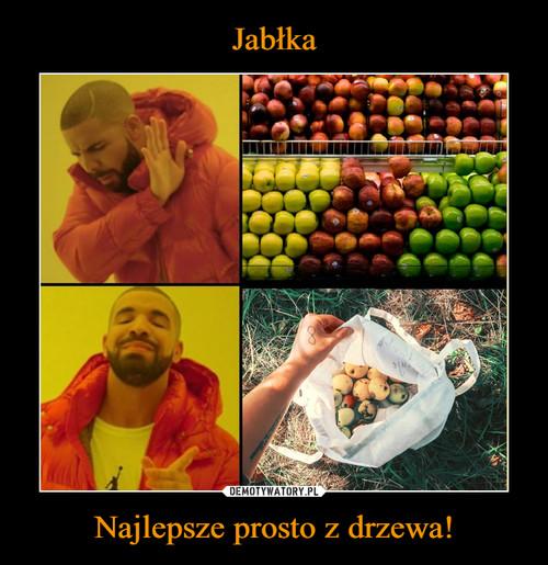 Jabłka Najlepsze prosto z drzewa!