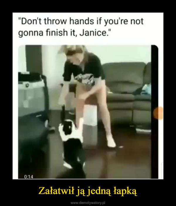 Załatwił ją jedną łapką –