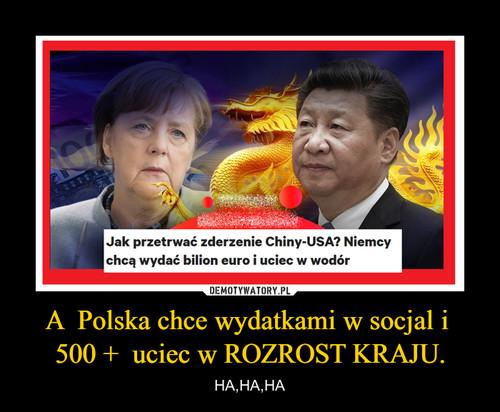 A  Polska chce wydatkami w socjal i  500 +  uciec w ROZROST KRAJU.