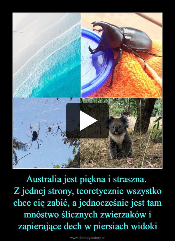 Australia jest piękna i straszna. Z jednej strony, teoretycznie wszystko chce cię zabić, a jednocześnie jest tam mnóstwo ślicznych zwierzaków i zapierające dech w piersiach widoki –