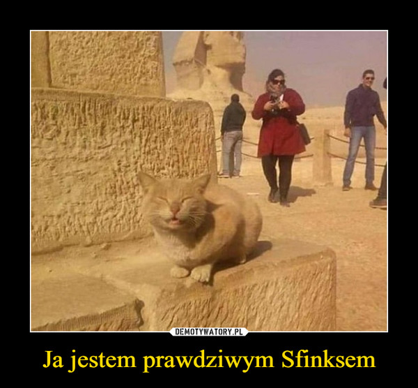 Ja jestem prawdziwym Sfinksem –