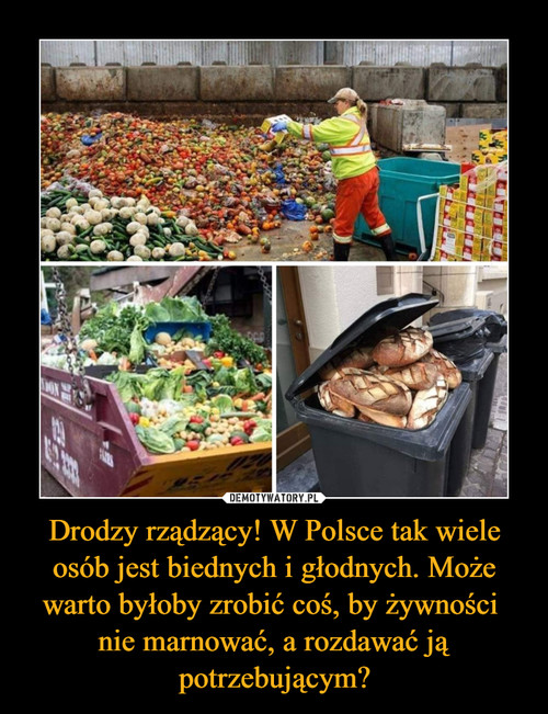 Drodzy rządzący! W Polsce tak wiele osób jest biednych i głodnych. Może warto byłoby zrobić coś, by żywności  nie marnować, a rozdawać ją potrzebującym?