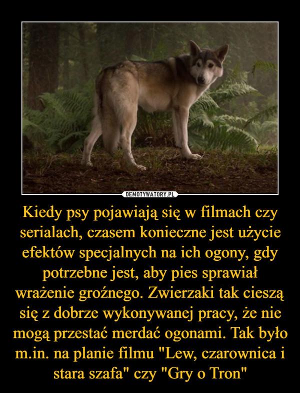 """Kiedy psy pojawiają się w filmach czy serialach, czasem konieczne jest użycie efektów specjalnych na ich ogony, gdy potrzebne jest, aby pies sprawiał wrażenie groźnego. Zwierzaki tak cieszą się z dobrze wykonywanej pracy, że nie mogą przestać merdać ogonami. Tak było m.in. na planie filmu """"Lew, czarownica i stara szafa"""" czy """"Gry o Tron"""" –"""