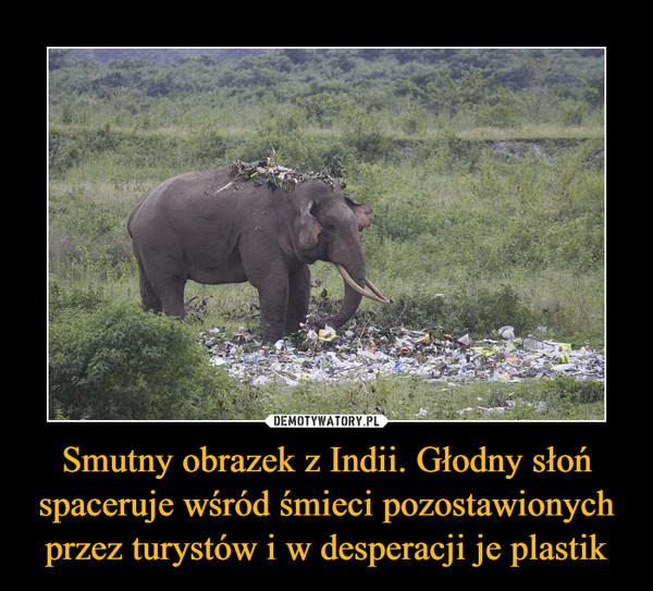 Smutny obrazek z Indii. Głodny słoń spaceruje wśród śmieci pozostawionych przez turystów i w desperacji je plastik –
