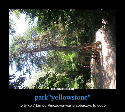 "park""yellowstone"""