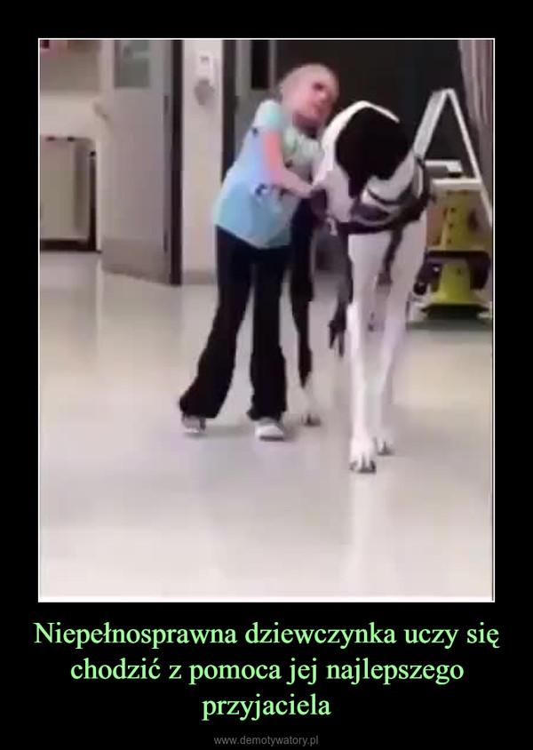 Niepełnosprawna dziewczynka uczy się chodzić z pomoca jej najlepszego przyjaciela –