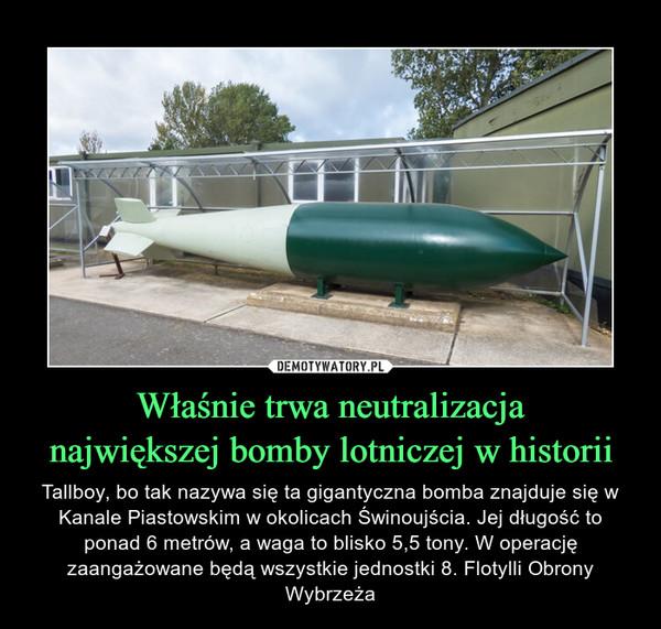 Właśnie trwa neutralizacjanajwiększej bomby lotniczej w historii – Tallboy, bo tak nazywa się ta gigantyczna bomba znajduje się w Kanale Piastowskim w okolicach Świnoujścia. Jej długość to ponad 6 metrów, a waga to blisko 5,5 tony. W operację zaangażowane będą wszystkie jednostki 8. Flotylli Obrony Wybrzeża