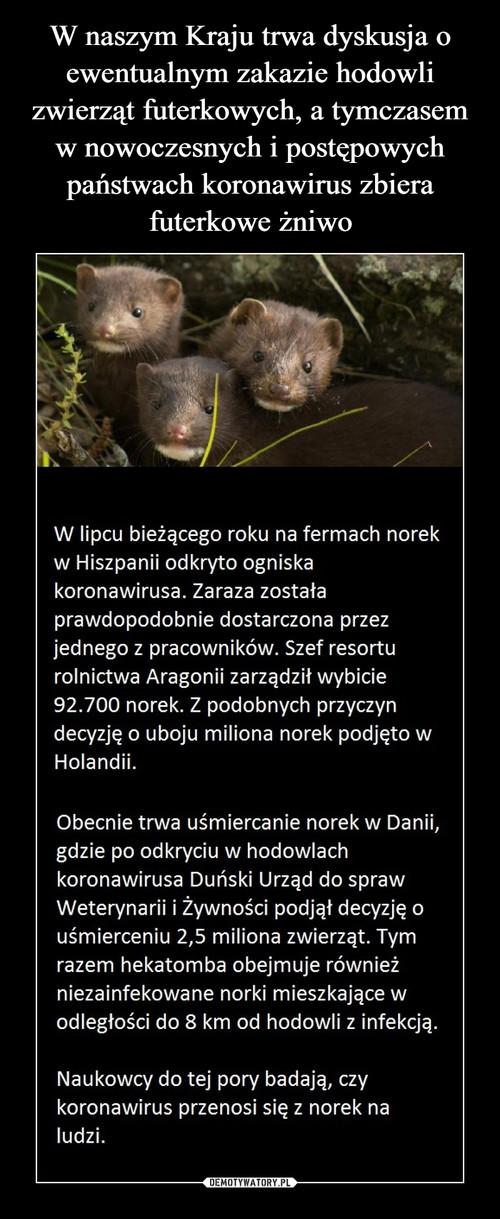 W naszym Kraju trwa dyskusja o ewentualnym zakazie hodowli zwierząt futerkowych, a tymczasem w nowoczesnych i postępowych państwach koronawirus zbiera futerkowe żniwo