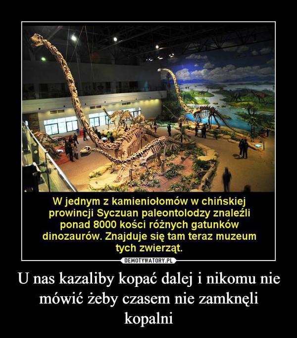 U nas kazaliby kopać dalej i nikomu nie mówić żeby czasem nie zamknęli kopalni –  W jednym z kamieniołomów w chińskiejprowincji Syczuan paleontolodzy znaleźliponad 8000 kości różnych gatunkówdinozaurów. Znajduje się tam teraz muzeumtych zwierząt.