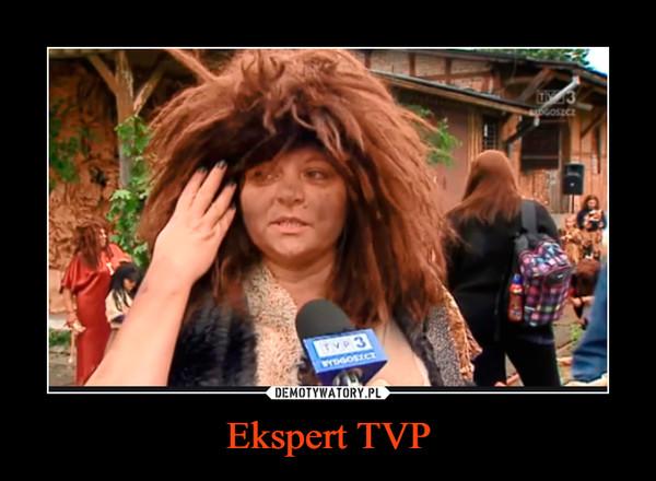 Ekspert TVP –