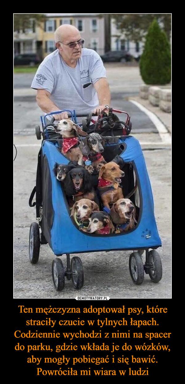 Ten mężczyzna adoptował psy, które straciły czucie w tylnych łapach. Codziennie wychodzi z nimi na spacer do parku, gdzie wkłada je do wózków, aby mogły pobiegać i się bawić. Powróciła mi wiara w ludzi –