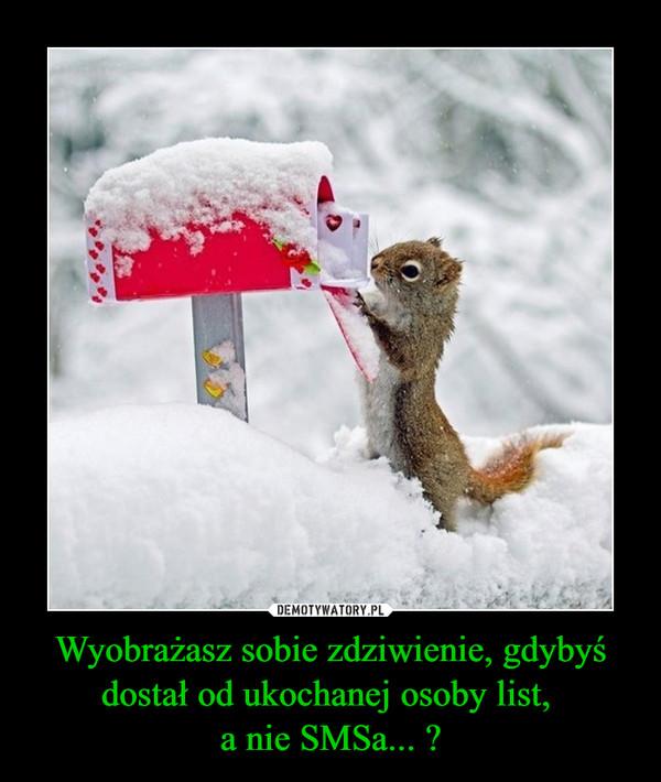 [Obrazek: 1606462764_v82sue_600.jpg]