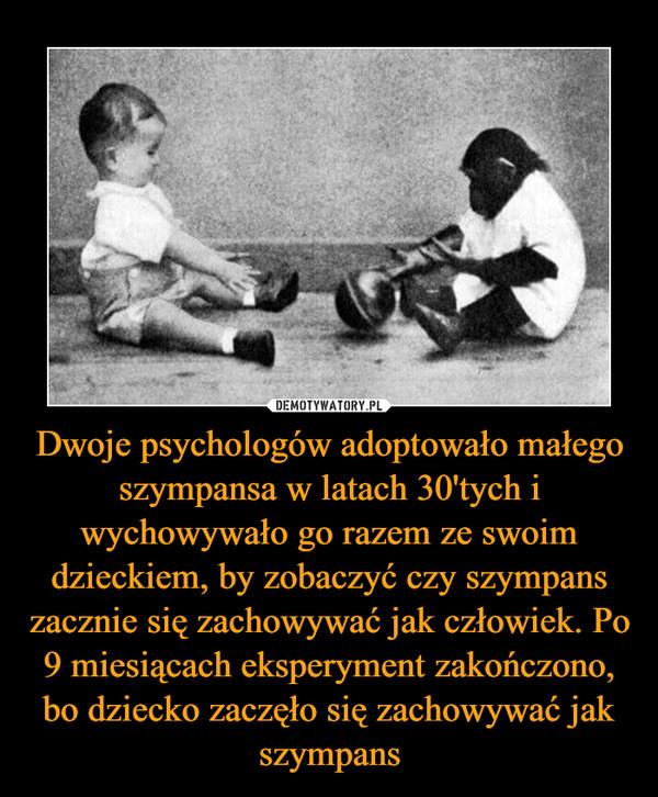 Dwoje psychologów adoptowało małego szympansa w latach 30'tych i wychowywało go razem ze swoim dzieckiem, by zobaczyć czy szympans zacznie się zachowywać jak człowiek. Po 9 miesiącach eksperyment zakończono, bo dziecko zaczęło się zachowywać jak szympans –