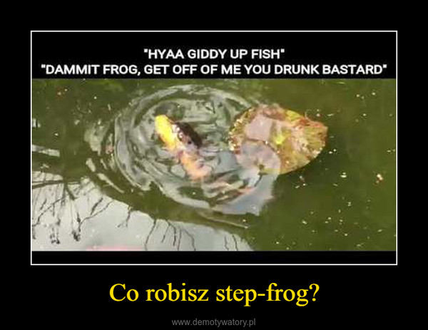 Co robisz step-frog? –