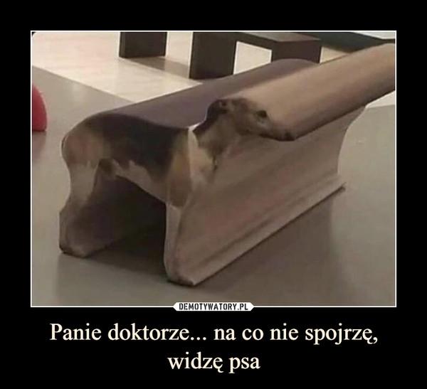 Panie doktorze... na co nie spojrzę, widzę psa –
