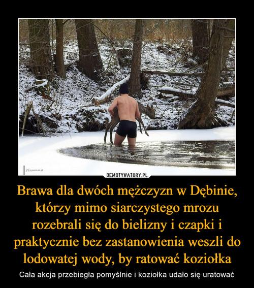 Brawa dla dwóch mężczyzn w Dębinie, którzy mimo siarczystego mrozu rozebrali się do bielizny i czapki i praktycznie bez zastanowienia weszli do lodowatej wody, by ratować koziołka