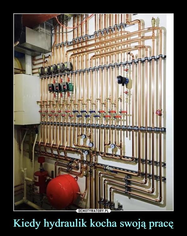 Kiedy hydraulik kocha swoją pracę –