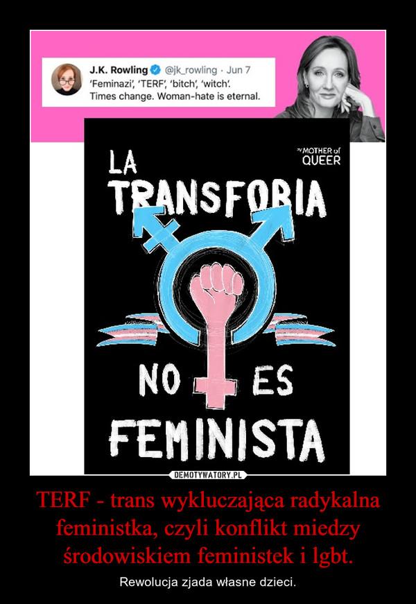 TERF - trans wykluczająca radykalna feministka, czyli konflikt miedzy środowiskiem feministek i lgbt. – Rewolucja zjada własne dzieci.