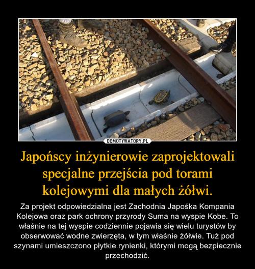 Japońscy inżynierowie zaprojektowali specjalne przejścia pod torami kolejowymi dla małych żółwi.