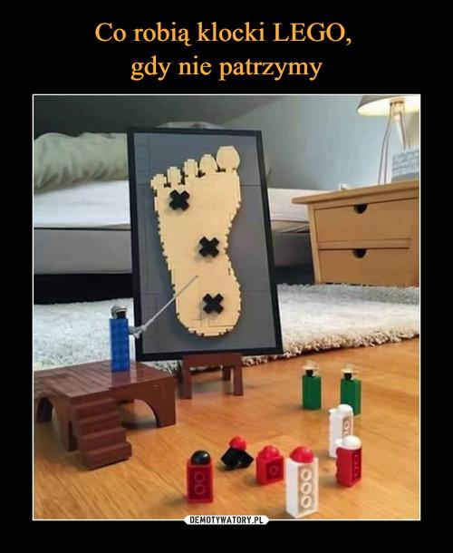 Co robią klocki LEGO,  gdy nie patrzymy