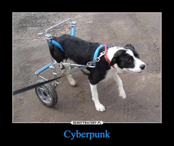 Cyberpunk –